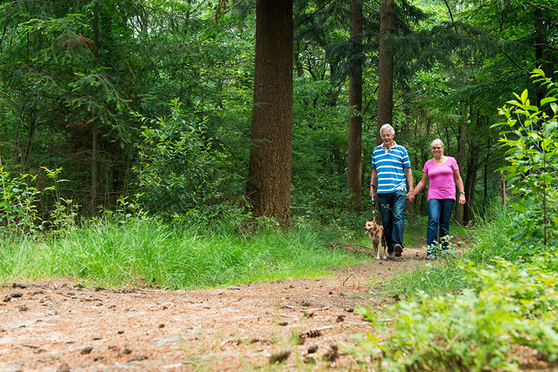 Looking Down the Trail – Planning Ahead for Retirement